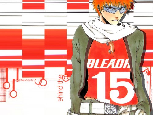 BB_Bleach_Wallpaper_ (118)