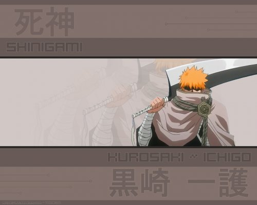 BB_Bleach_Wallpaper_ (55)