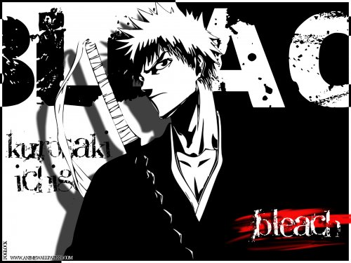 BB_Bleach_Wallpaper_ (58)